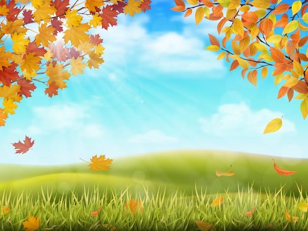 木の枝と秋の田園風景