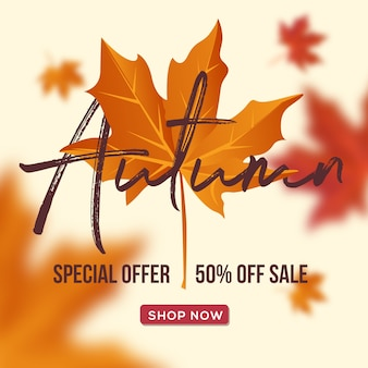 Autumn sale background layout decorate with leaves vector