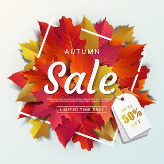 Autumn sale background layout template