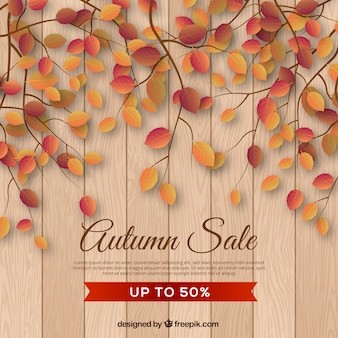 Autumn sale background with realistic leaves