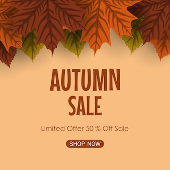가을 판매 배경