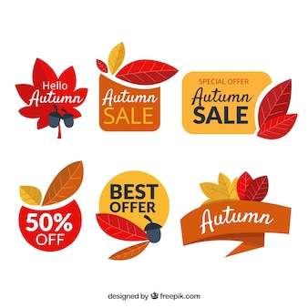 Autumn sale badges collection in flat style