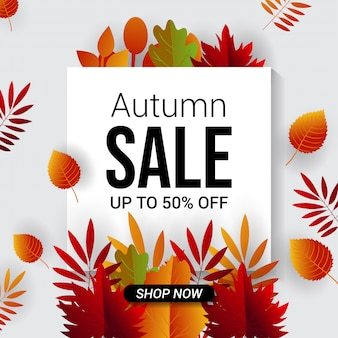 Autumn sale banner background  template