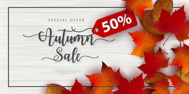 Autumn sale banner decorate with leaves