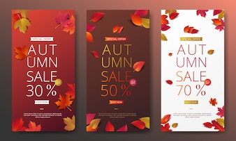 Autumn sale banner layout template decorate
