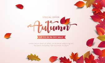 Autumn sale banner layout template