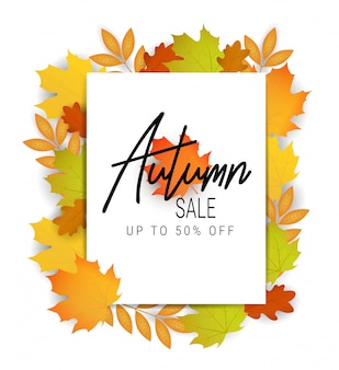 Autumn sale banner. offer illustration. autumn leaves
