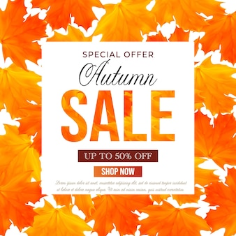 Autumn sale banner template with maple orange and yellow leaves for shopping sale banner poster