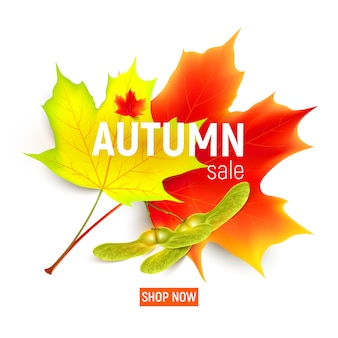 Autumn sale banner with maple leaf