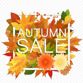Autumn sale discount banner