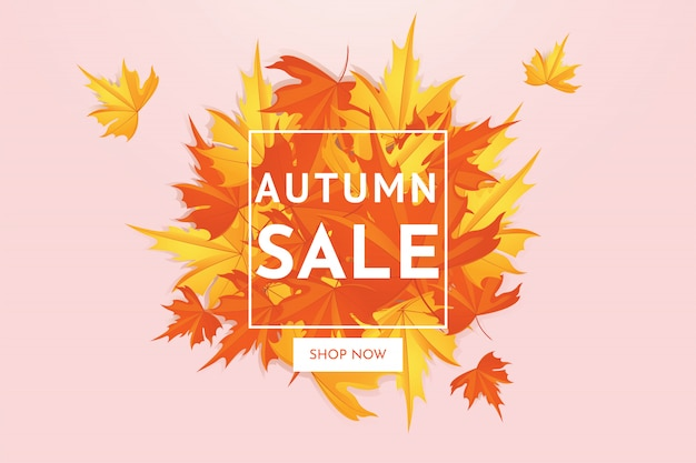 Autumn sale discount offer with maple leaves, banner and background.