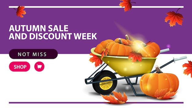 Autumn sale and discount week, horizontal discount web banner with garden wheelbarrow
