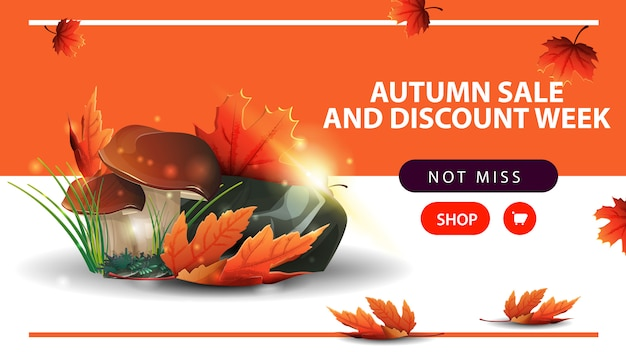 Autumn sale and discount week, horizontal discount web banner with mushrooms