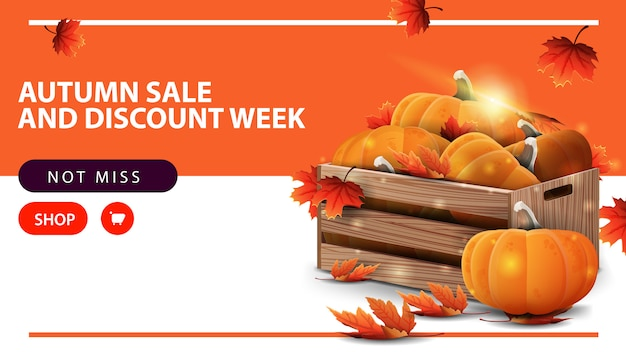 Autumn sale and discount week, horizontal discount web banner