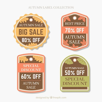 Autumn sale labels collection in flat style