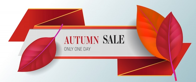 Autumn sale, only one day lettering with red leaves. autumn offer or sale advertising