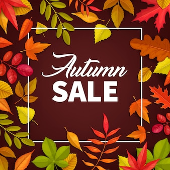 Autumn sale  poster, fallen leaves offer