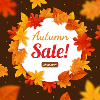 Autumn sale promotion advertise illustrated