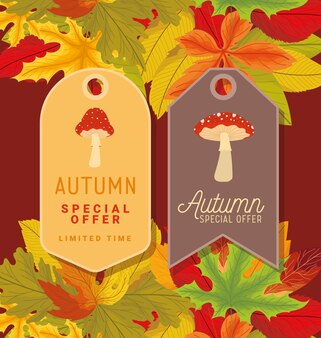 Autumn sale tags representation