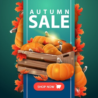 Autumn sale web banner with ribbon