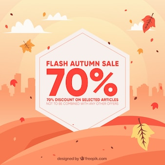 Autumn sale with leaves and the city