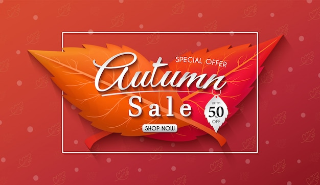 Autumn sales banner design with colorful seasonal fall leaves and concept autumn advertising.