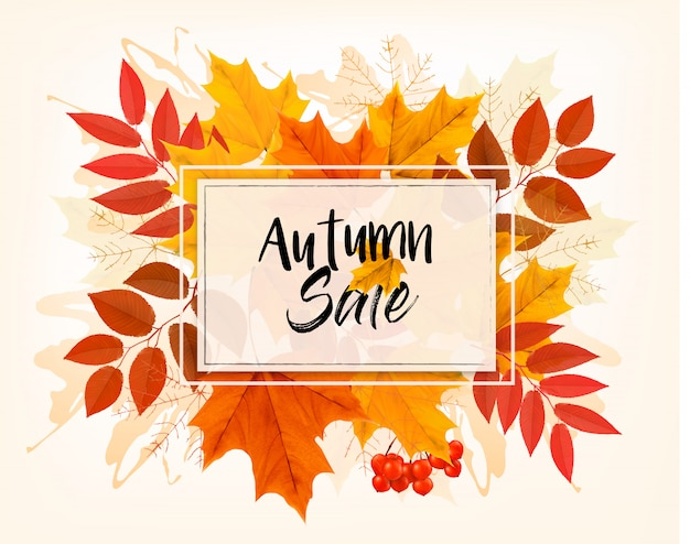 Autumn sales card with colorful leaves. .