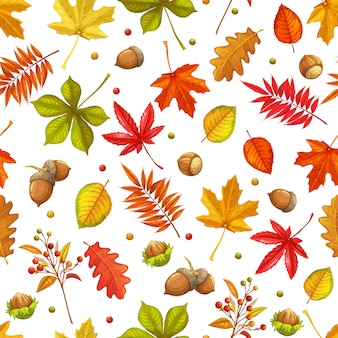 Autumn seamless pattern with leaves maple, oak, elm, chestnut or japanese maple, rhus typhina and autumn berries. fall vector illustration.