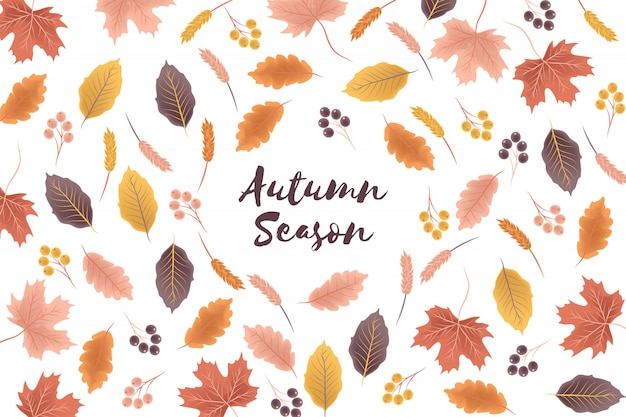 Autumn season background with fall leaf illustration