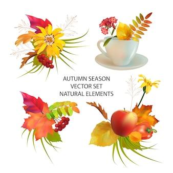 白い背景の上の紅葉と自然要素の秋のシーズンコレクション