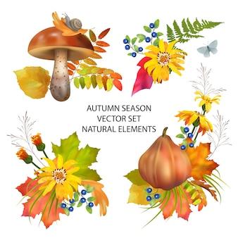 Осенний сезон коллекция осенних листьев и элементов природы