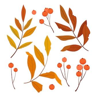 色とりどりの葉とベリーのナナカマドの秋のセット。図。