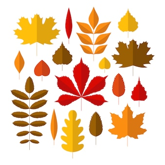 Autumn set with cute colorful leaves in flat style