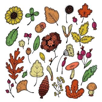 秋のセット。