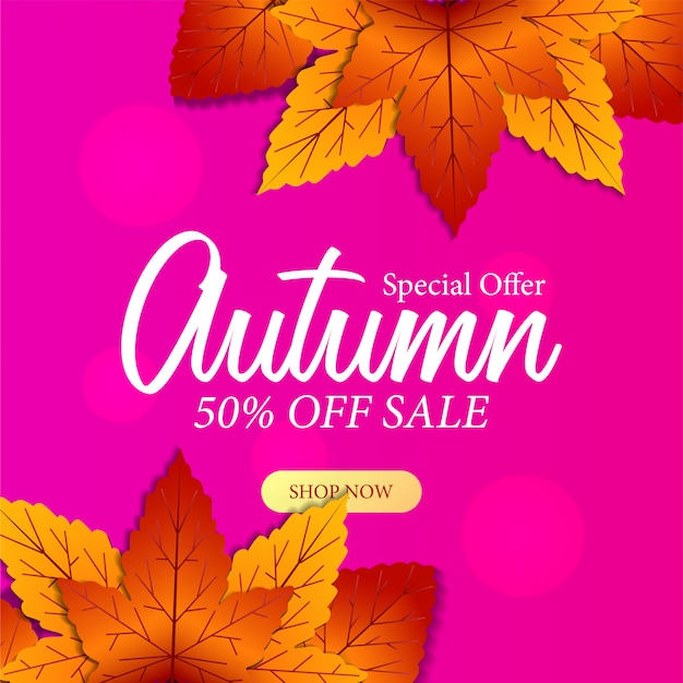 Autumn special offer background with fall leaves