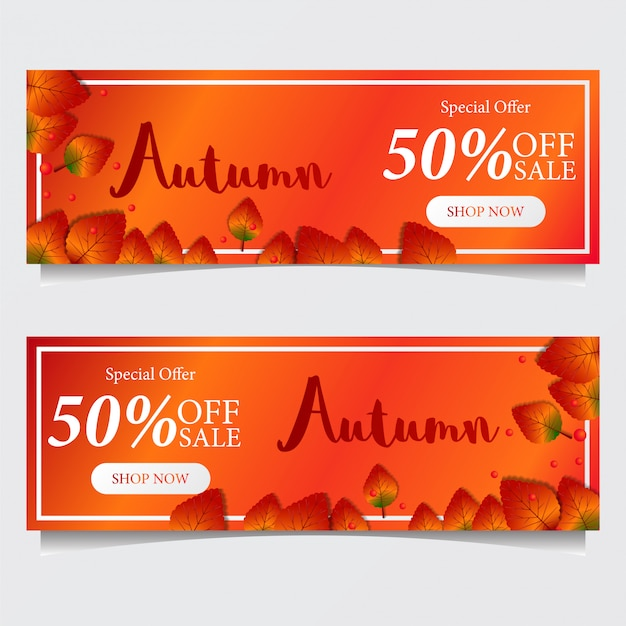 Autumn special offer banner with fall leaves