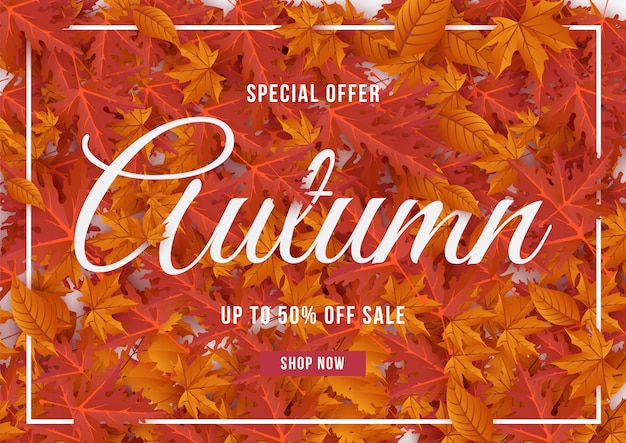 Autumn special offer banner with leaves illustration