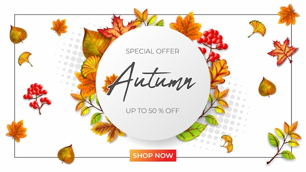 Autumn special sale vector illustration white background