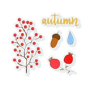 秋のステッカーは、ベリーとドングリのセット。デザイン装飾のためのベクトルコレクション。