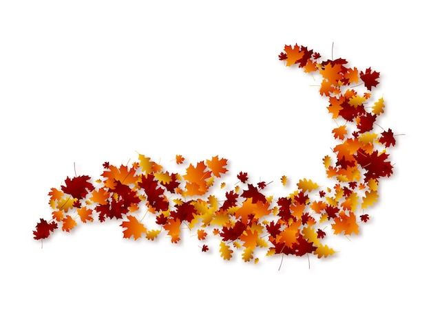 Foglie di turbinio d'autunno.