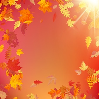 Autumn template layout decorate with leaves.