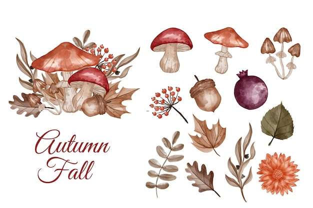 Autumn themed flower, leaves, and mushroom isolated clip-art