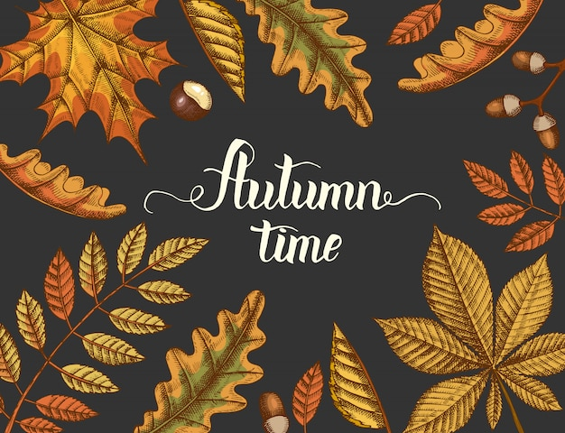 Autumn time, hand drawn autumn colored yellowed leaves and hand made lettering. engraving illustration.