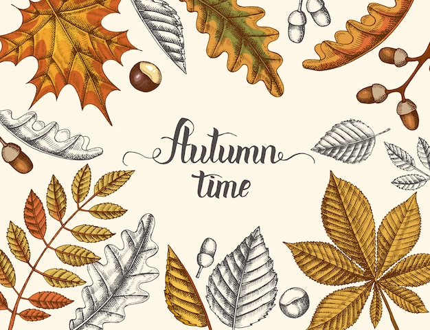 Autumn time, hand drawn autumn doodle and colored yellowed leaves and hand made lettering. engraving illustration.