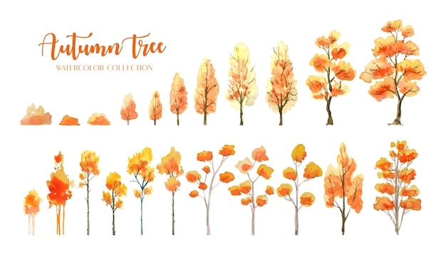 Autumn tree and bush watercolor painting collection.