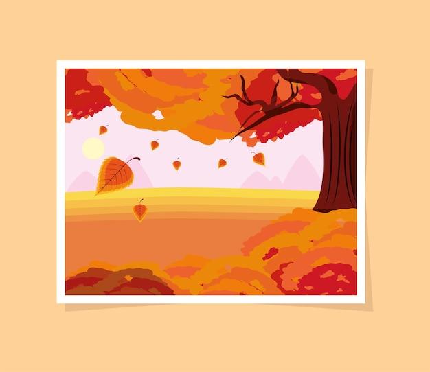 가을 나무 떨어지는 잎