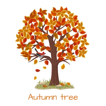 Autumn tree. nature tree, season fall and branch plant, vector illustration