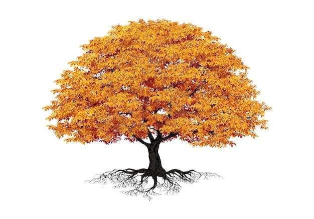 가 나무 vectorrealistic 나무 흰색 배경에 고립
