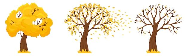 秋の木。黄色の葉が落ちる、落ち葉とオレンジの木が葉を飛ぶイラスト