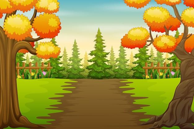公園の風景の中の秋の木々